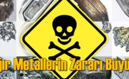 Ağır Metaller ve Ağır Metal Detoksu