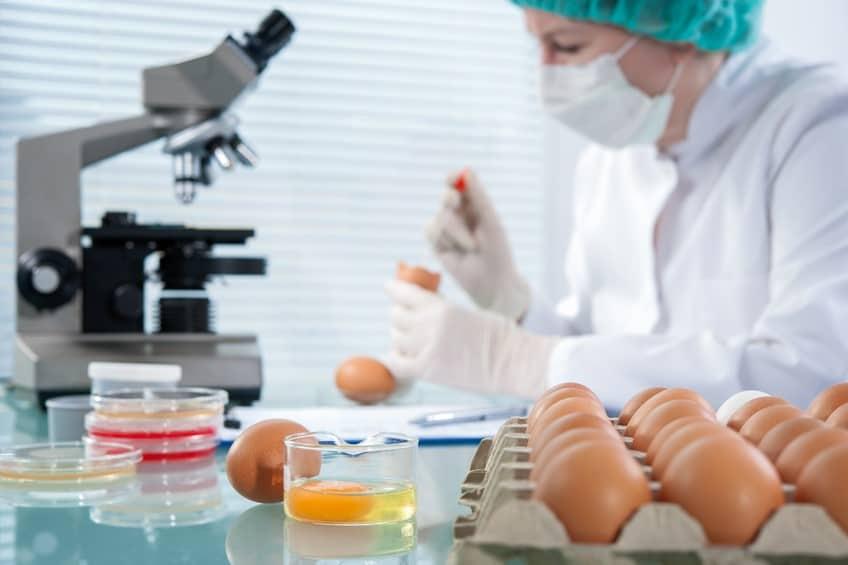 Gıda Mühendisliği Nedir - Gıda Mühendisi Kimdir, Ne İş Yapar