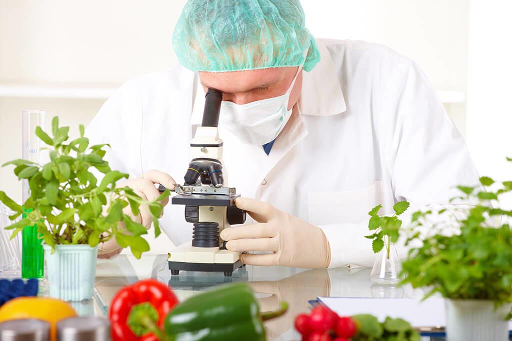 Gıda mühendisliği ile genetik mühendisliği birbirine karıştırılır