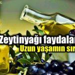 Zeytinyağının Faydaları Nelerdir
