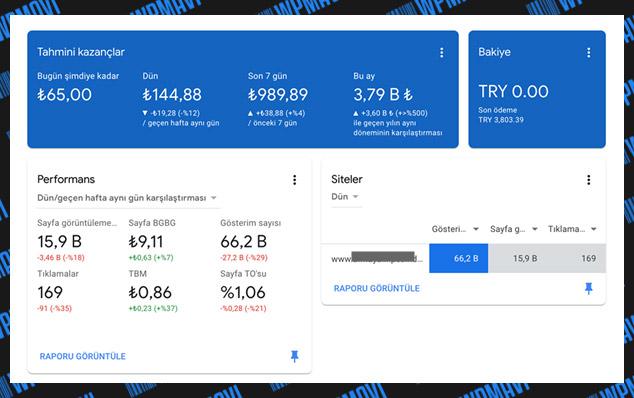 Başarılı Bir Örnek: Google Adsense İle İnternet Sitesinden Para Kazanmak